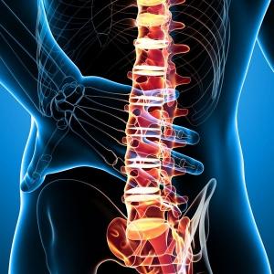 News-physiospain-bad-back